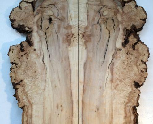 HORSE CHESTNUT BURR 3.2cm thick - tree number 1390D Natural Waney Live Edge Slab Board Kiln Dried Planed Seasoned Hardwood Wildwood