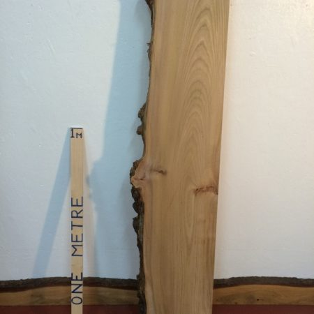 BURRY ELM 6.5cm thick - tree number 1118A Single Waney Natural Live Edge Slab Planed Hardwood Kiln Dried Seasoned Board Fireplace Mantel Shelf