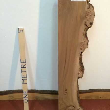 ELM 6cm thick - tree number 1113A Single Waney Natural Live Edge Slab Planed Hardwood Kiln Dried Seasoned Board Fireplace Mantel Shelf