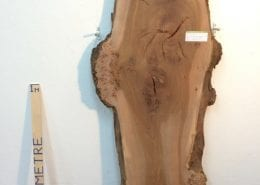BURRY ELM 6.5cm thick - tree number 1113A Natural Waney Live Edge Slab Wood Board Kiln Dried Planed Seasoned Hardwood Wildwood Local Sustainable Timber
