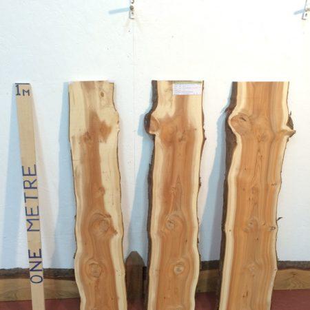 YEW 2.2cm thick - tree number 1420B Natural Waney Live Edge Slab Wood Board Kiln Dried Planed Seasoned Hardwood