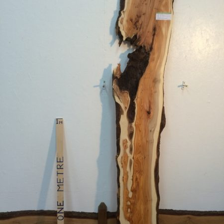 PIPPY YEW 2.2cm thick - tree number 1422A Natural Waney Live Edge Slab Wood Board Kiln Dried Planed Seasoned Hardwood Wildwood Local Sustainable Timber