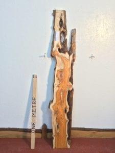 PIPPY YEW 2.2cm thick - tree number 1508B Natural Waney Live Edge Slab Wood Board Kiln Dried Planed Seasoned Hardwood Wildwood