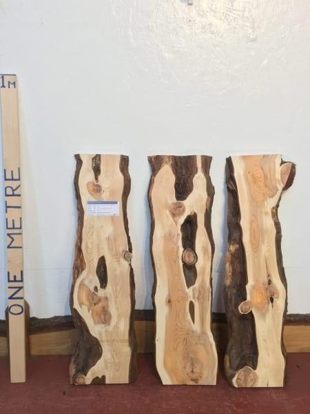 YEW BUNDLE 3cm thick - tree number 1453E Natural Waney Live Edge Slab Wood Board Kiln Dried Planed Seasoned Hardwood Wildwood Offcut