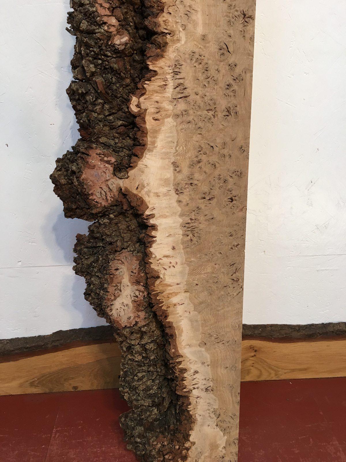 burr oak singles & personals Press to search craigslist  favorite this post jun 7 suzuki singles manual 77-80 $20 (burr oak, ks)  (burr oak,ks) pic.