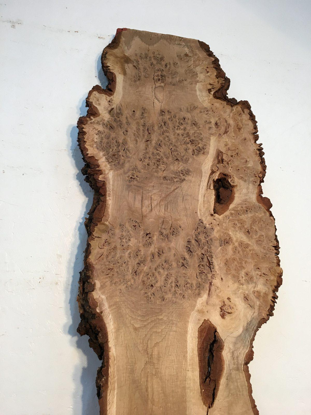 burr oak single women Burr oak ia demographics data with comparing the median age of men versus women in figure 7 we find that burr oak indicates median age of men compares as.