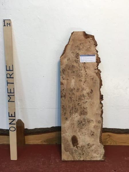 BURRY OAK 4.2cm thick - tree number 1008A- Single Waney Live Edge Slab Wood Board Kiln Dried Planed Seasoned Hardwood Wildwood