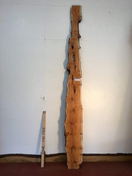 PIPPY YEW 3cm thick - tree number 1532B Natural Waney Live Edge Slab Wood Board Kiln Dried Planed Seasoned Hardwood Wildwood