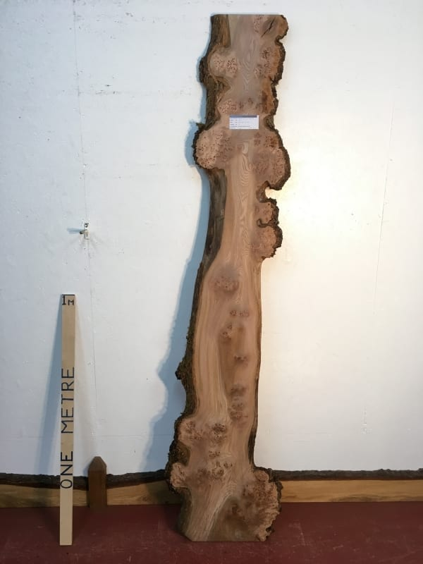 BURRY ELM 1482A-6 Natural Waney Live Edge Slab Wood Board Kiln Dried Planed Seasoned Hardwood Wildwood