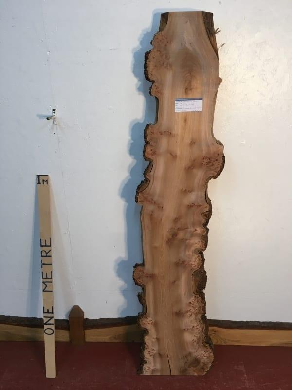 BURRY ELM 1482B-2 Natural Waney Live Edge Slab Wood Board 3cm thick Kiln Dried Planed Seasoned Hardwood Wildwood