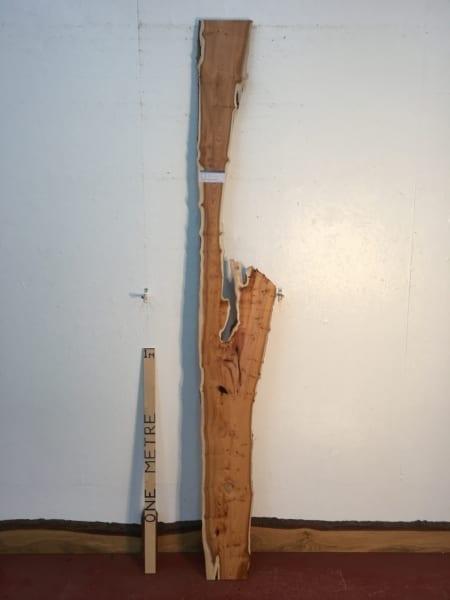 PIPPY YEW 1459B-4 Natural Live Waney Edge Slab Wood Board thickness 3cm Kiln Dried Planed Seasoned Hardwood Wildwood