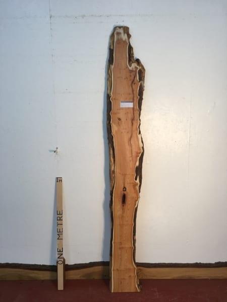PIPPY YEW 1459B-3 Natural Live Waney Edge Slab Wood Board thickness 3cm Kiln Dried Planed Seasoned Hardwood Wildwood