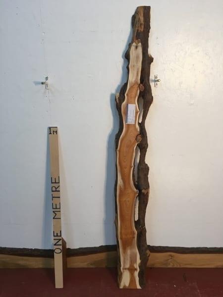 YEW 1459C-4 Natural Live Waney Edge Slab Wood Board thickness 3cm Kiln Dried Planed Seasoned Hardwood Wildwood