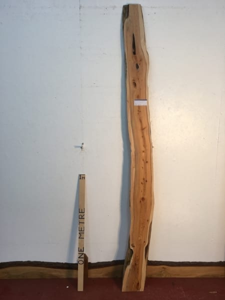 YEW 0496-2 Natural Live Waney Edge Slab Wood Board thickness 3cm Kiln Dried Planed Seasoned Hardwood Wildwood