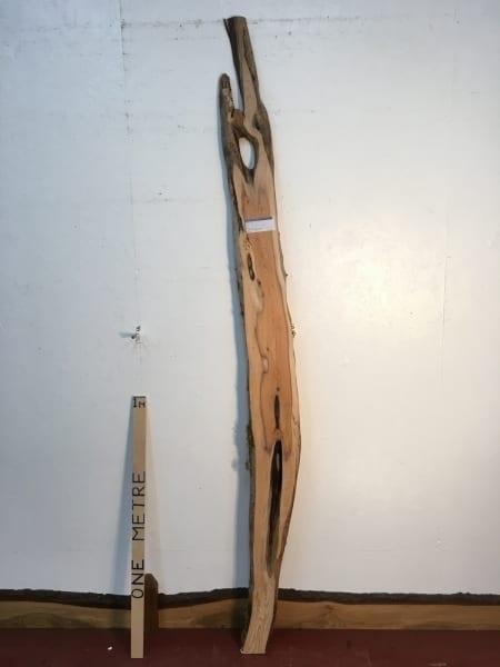 YEW 0496-1 Natural Live Waney Edge Slab Wood Board thickness 3cm Kiln Dried Planed Seasoned Hardwood Wildwood
