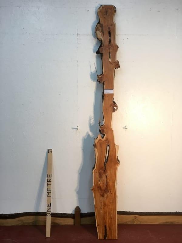 YEW 1518-5 Natural Waney Live Edge Slab Wood Board thickness 4cm Kiln Dried Planed Seasoned Hardwood Wildwood