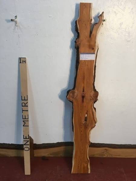 YEW 1518-1 Natural Waney Live Edge Slab Wood Board thickness 4cm Kiln Dried Planed Seasoned Hardwood Wildwood