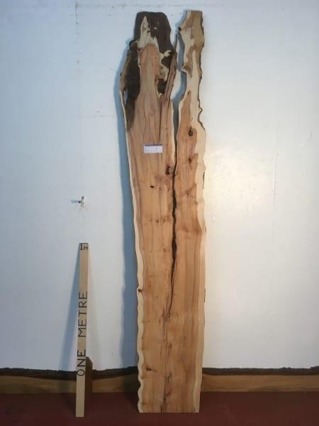 YEW 1435B-3 Natural Waney Live Edge Slab Wood Board thickness 3cm Kiln Dried Planed Seasoned Hardwood Wildwood
