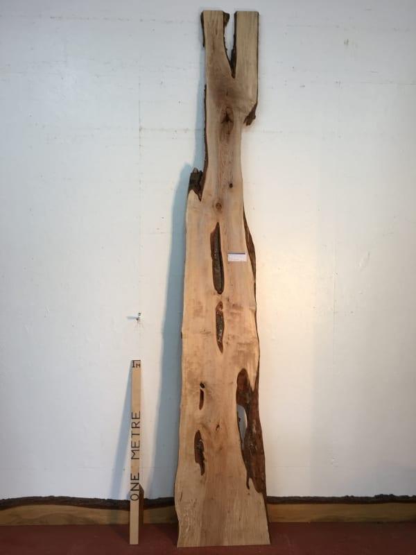BIRCH Natural Waney Live Edge Slab Wood Board 1577-4