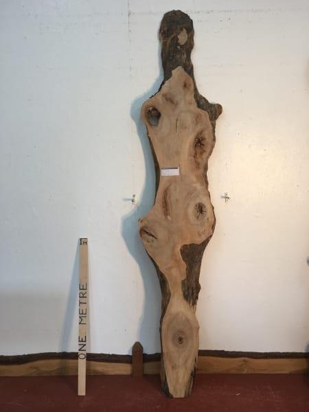 MAPLE Natural Waney Live Edge Slab Wood Board 1570-12