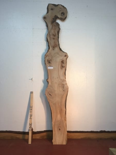 MAPLE Natural Waney Live Edge Slab Wood Board 1570-11