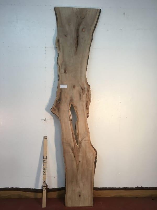 MAPLE Natural Waney Live Edge Slab Wood Board 1570-8