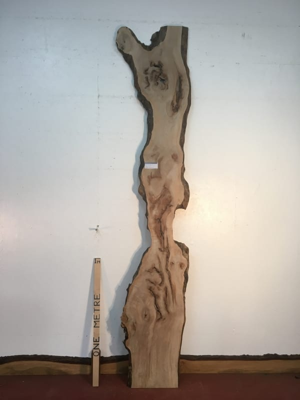 MAPLE Natural Waney Live Edge Slab Wood Board 1570-2