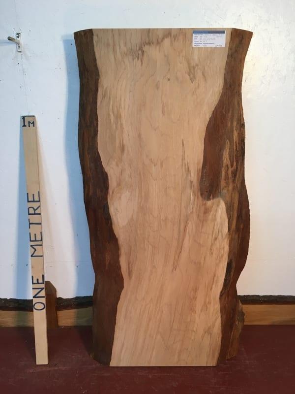 CEDAR OF LEBANON Natural Waney Live Edge Slab Wood Board 1393A-1