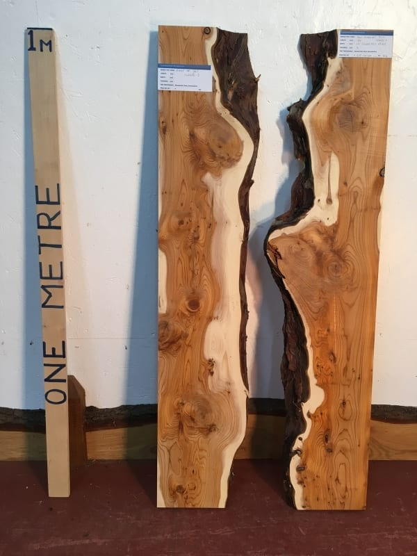 YEW RIVER SET Single Waney Natural Live Edge Boards 1422B-2