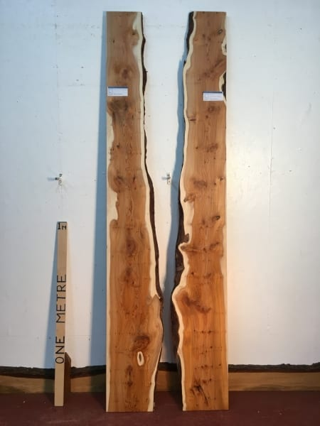 YEW SET Single Waney Natural Live Edge Boards 1422B-3/4