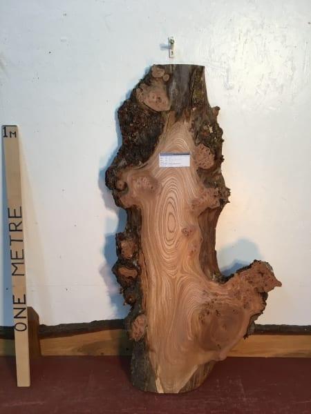 ELM Natural Waney Live Edge Slab Wood Board 1486A-4