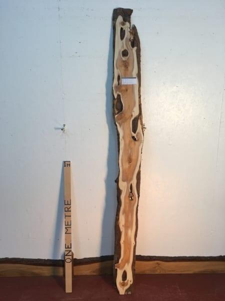 YEW Natural Waney Live Edge Slab Wood Board 1438B-4