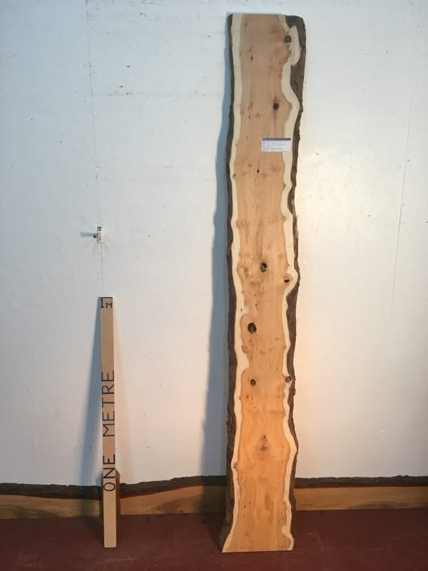 PIPPY YEW Natural Waney Live Edge Slab Wood Board 1443A-1