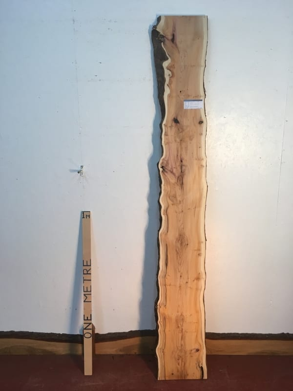 PIPPY YEW Natural Waney Live Edge Slab Wood Board 1443A-3
