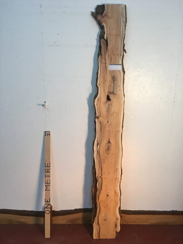 PIPPY YEW Natural Waney Live Edge Slab Wood Board 1443A-4