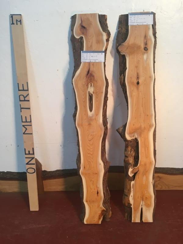 YEW BUNDLE Natural Waney Live Edge Slab Wood Board 1440C-4