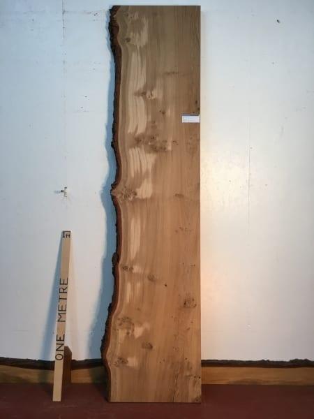 BURRY OAK Single Waney Natural Live Edge Board 1245A-3