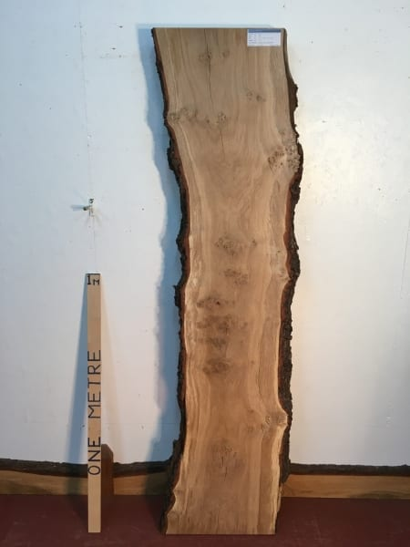 BURRY OAK Natural Waney Live Edge Slab Wood Board 1311-4