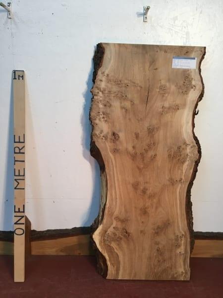 BURRY OAK Natural Waney Live Edge Slab Wood Board 1311-1