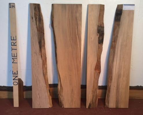 BEECH BUNDLE Single Waney Natural Live Edge Boards 1558B-04