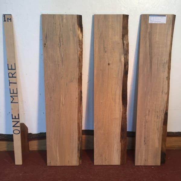 BEECH BUNDLE Single Waney Natural Live Edge Boards 1558B-05
