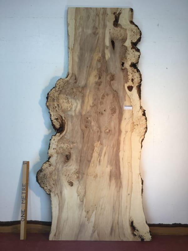 BURRY HORSE CHESTNUT Natural Waney Live Edge Slab Wood Board 1390A-7