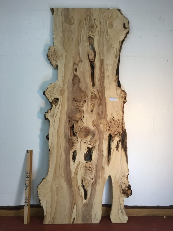 BURRY HORSE CHESTNUT Natural Waney Live Edge Slab Wood Board 1390A-16