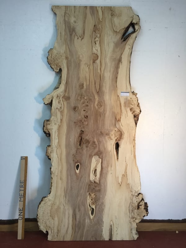 BURRY HORSE CHESTNUT Natural Waney Live Edge Slab Wood Board 1390A-15