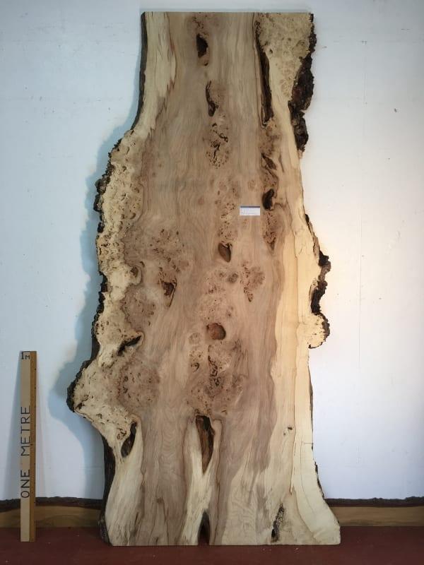 BURRY HORSE CHESTNUT Natural Waney Live Edge Slab Wood Board 1390A-5A