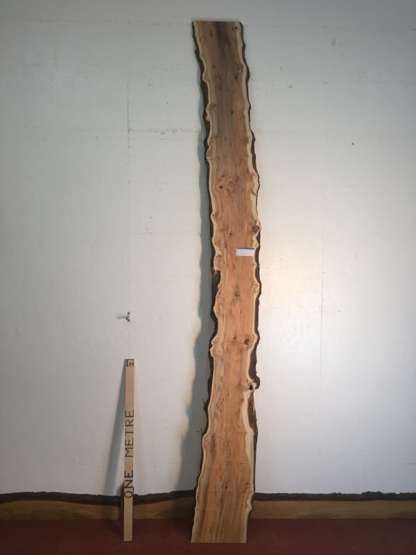 PIPPY YEW Natural Waney Live Edge Slab Wood Board 1557B-7