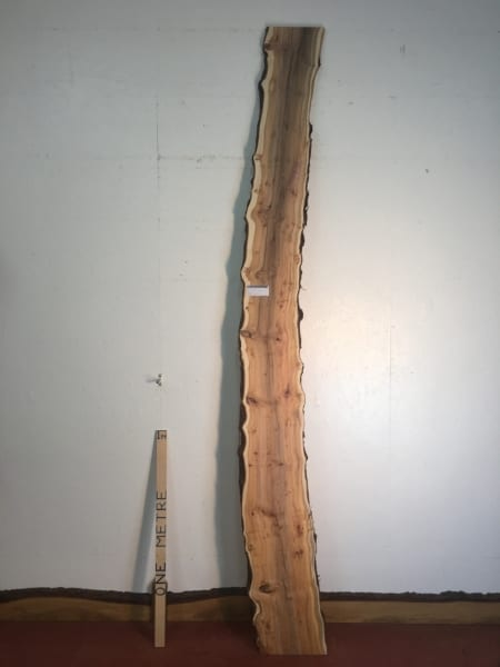 PIPPY YEW Natural Waney Live Edge Slab Wood Board 1557B-4