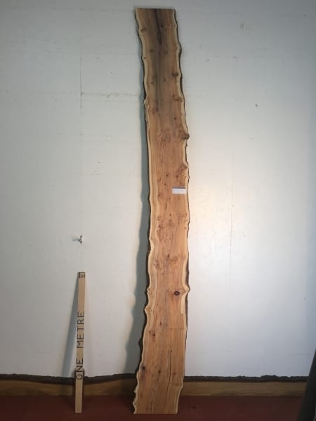 PIPPY YEW Natural Waney Live Edge Slab Wood Board 1557B-6