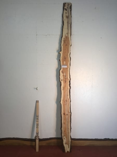 PIPPY YEW Natural Waney Live Edge Slab Wood Board 1557E-2