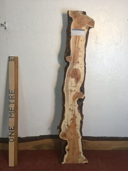 PIPPY YEW Natural Waney Live Edge Slab Wood Board 1557E-6A